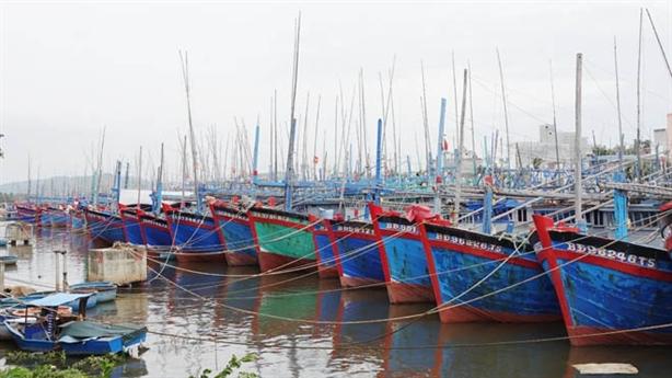 Bình Định xin đưa 2 cảng ra khỏi quy hoạch: Đúng, tốt...