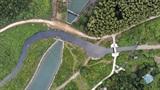 Nước Hà Nội nhiễm dầu thải